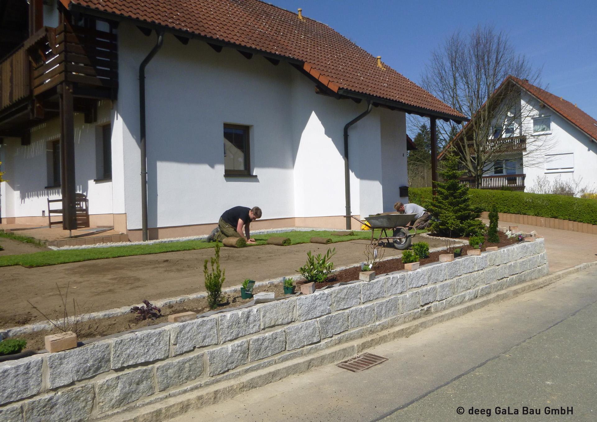 deeg Rollrasen verlegen pflanzen