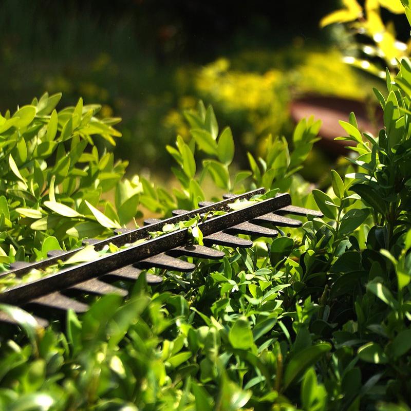 Gartenpflege deeg Landschaftsgärtner